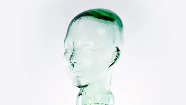 head glass mannequin