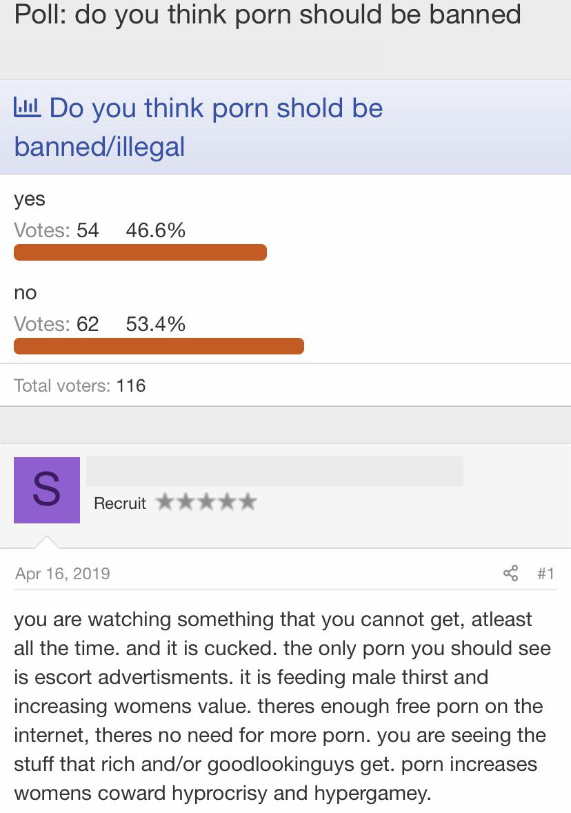 porno should be banned